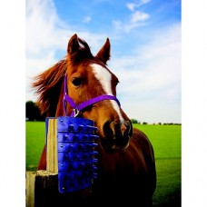 Itchin Post Grooming Pad Blue 13648-2