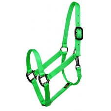 Abetta Nylon Basic 2-Ply Halter with Snap Large Green 239003HG