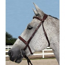Henri De Rivel Pro Mono Crown Padded Bridle 2480
